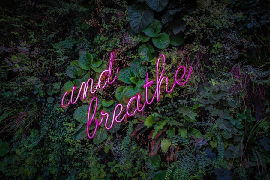 the importance of the breath