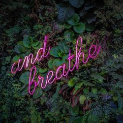 The importance of the breath in keeping your mind calm
